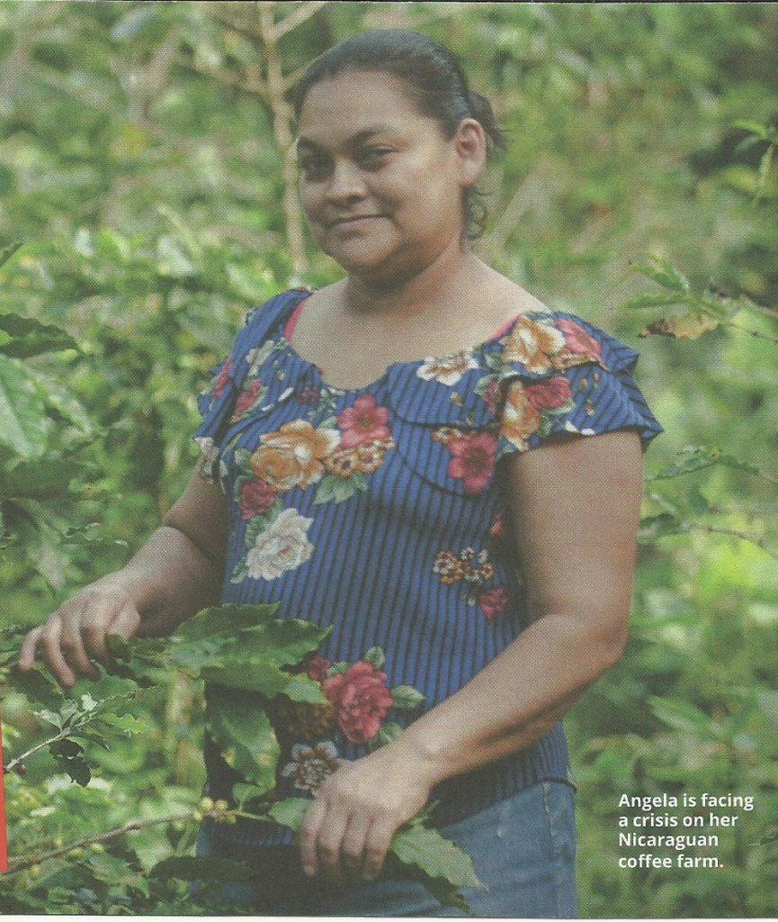 Angela is facing a crisis on her Nicaraguan coffee farm